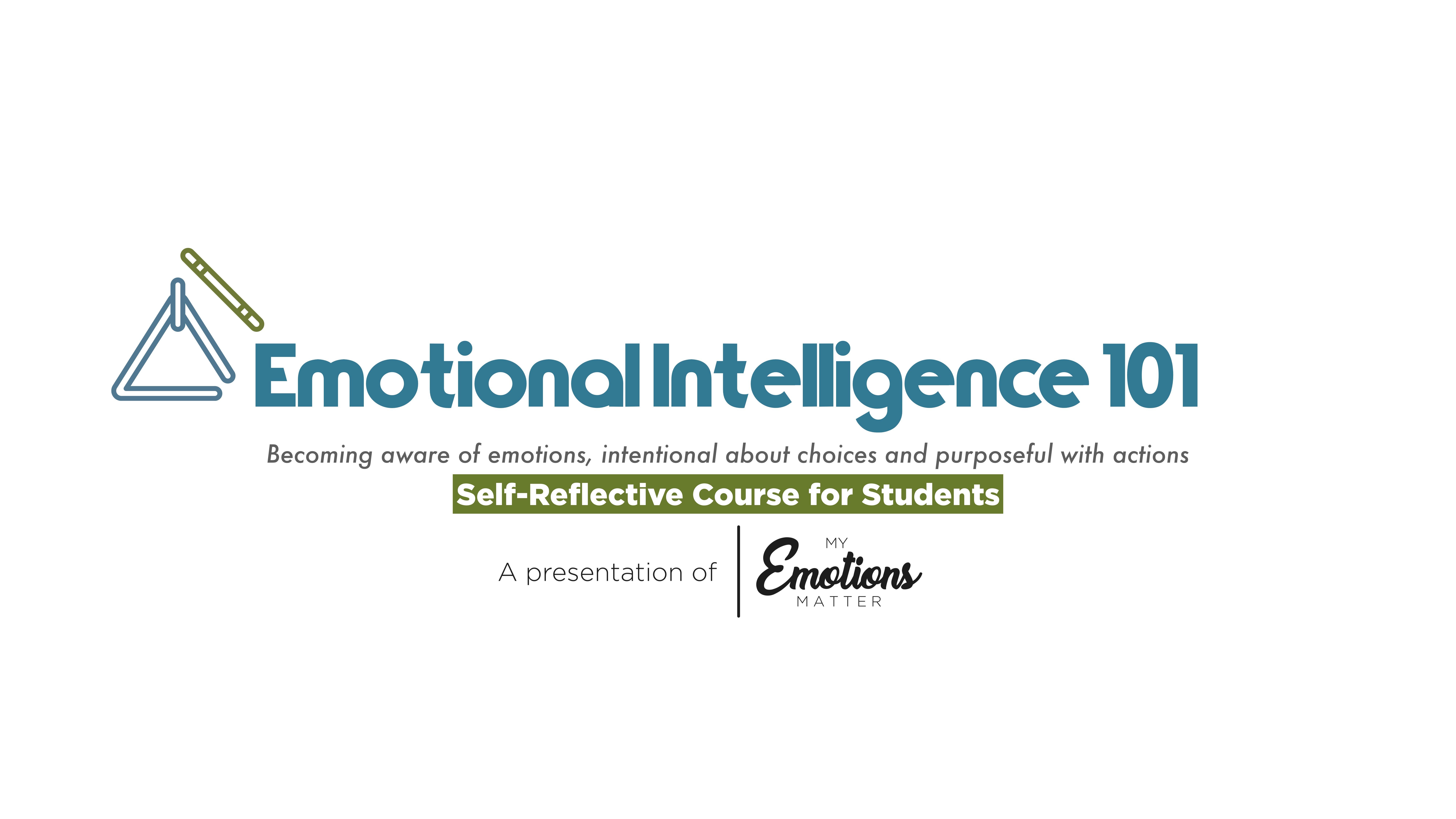 Emotional Intelligence 101   Program for Schools / Colleges